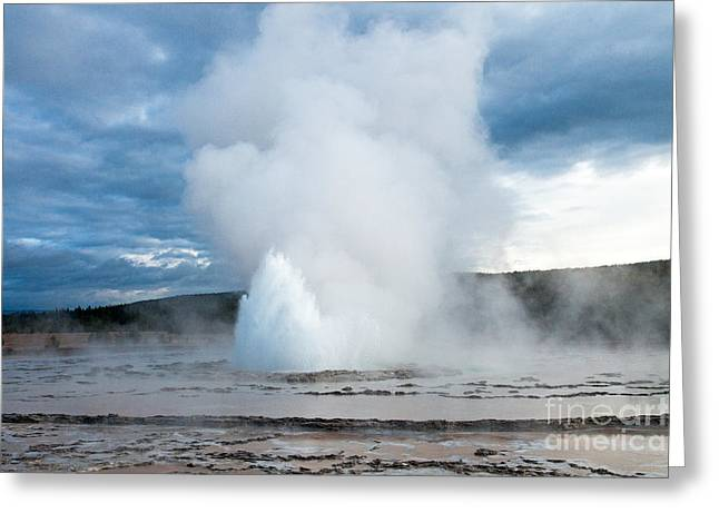 Great Falls Of Yellowstone Greeting Cards - Great Fountain Geyser on Firehole Lake Drive Greeting Card by Fred Stearns