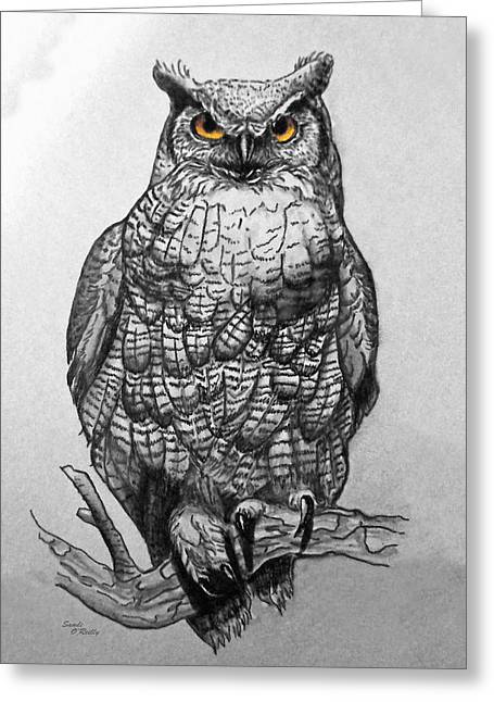 Sandi Oreilly Greeting Cards - Great Horned Owl Black And White Greeting Card by Sandi OReilly