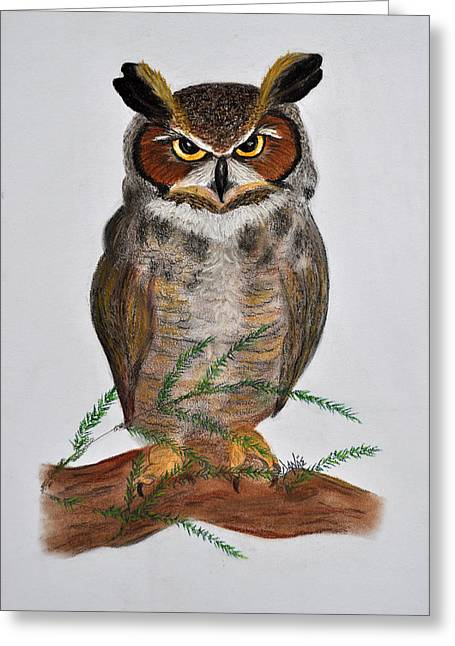 Great Birds Pastels Greeting Cards - Great Horned Owl Greeting Card by Danae McKillop