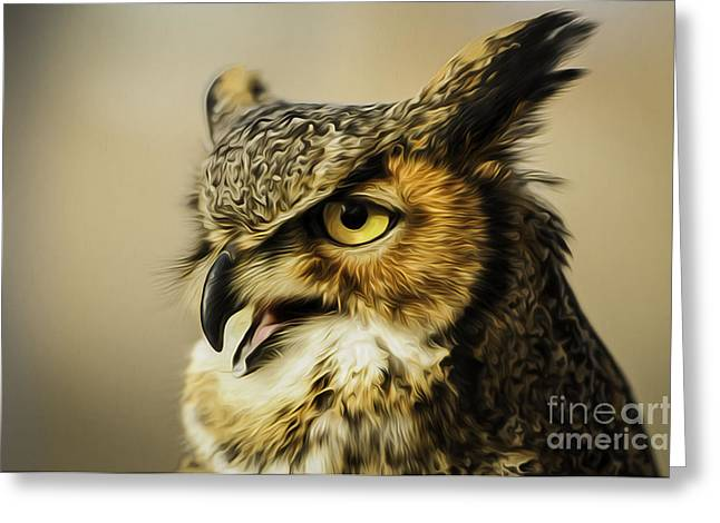 Fort Collins Digital Greeting Cards - Great Horned Owl Greeting Card by Julieanna D