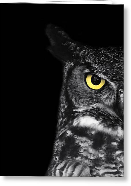 Owl Photographs Greeting Cards - Great Horned Owl Photo Greeting Card by Stephanie McDowell