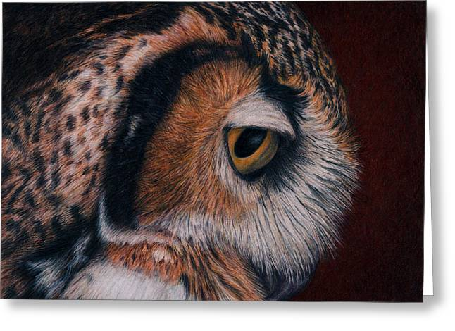 Great-horned Owls Greeting Cards - Great Horned Owl Portrait Greeting Card by Pat Erickson
