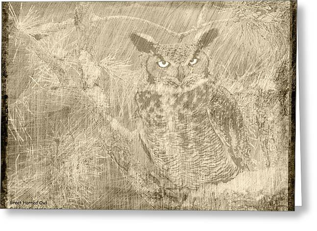 Owl Greeting Cards - Great Horned Owl Scratchings Greeting Card by LeeAnn McLaneGoetz McLaneGoetzStudioLLCcom