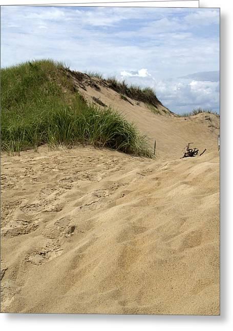 Michael D. Friedman Greeting Cards - Great Island Dunes Greeting Card by Michael Friedman
