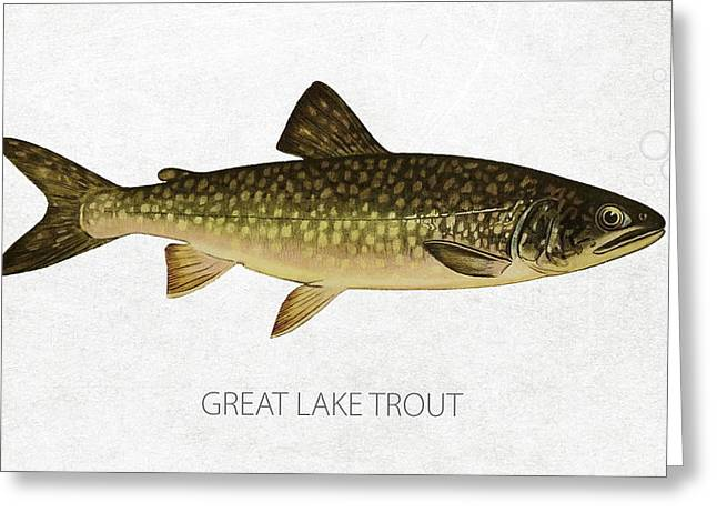 Salmon Digital Greeting Cards - Great Lake Trout Greeting Card by Aged Pixel