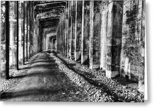 Shed Greeting Cards - Great Northern Railroad Snow Shed - Black and White Greeting Card by Mark Kiver