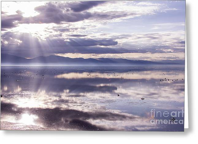 Sunshine Pyrography Greeting Cards - Great Salt Lake Reflection Greeting Card by Lavold Photography