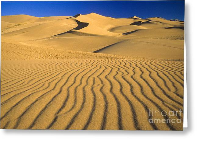 Great Sand Dunes National Preserve Greeting Cards - Great Sand Dunes National Park Greeting Card by Richard and Ellen Thane