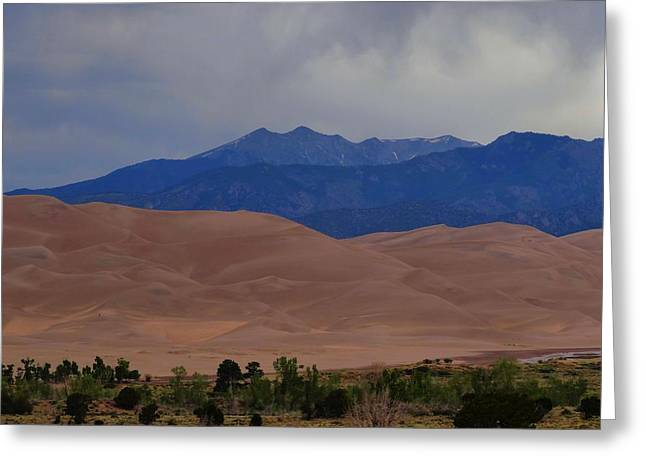 Great Sand Dunes National Park Greeting Cards - Great Sand Dunes National Park In Colorado Greeting Card by Dan Sproul