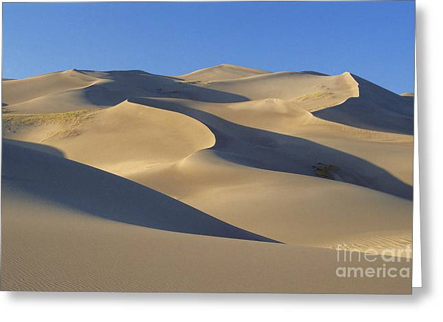 Great Sand Dunes National Preserve Greeting Cards - Great Sand Dunes National Park Greeting Card by Mark Newman
