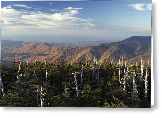 Dome Greeting Cards - Great Smokie Mountains National Park Greeting Card by Dustin K Ryan