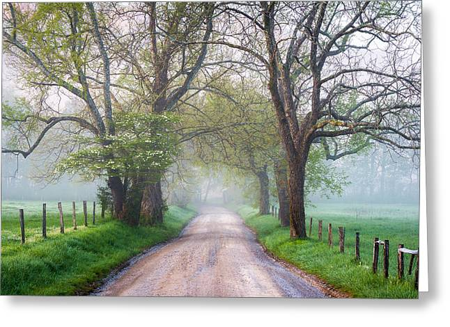 Haze Photographs Greeting Cards - Great Smoky Mountains National Park Cades Cove Country Road Greeting Card by Dave Allen