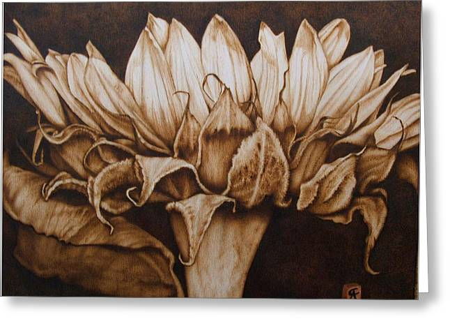 Flower Still Life Pyrography Greeting Cards - Great Sunflower no color Greeting Card by Cynthia Adams