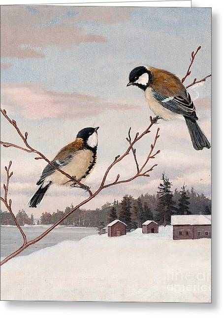 Norge Greeting Cards - Great Tits Greeting Card by Celestial Images