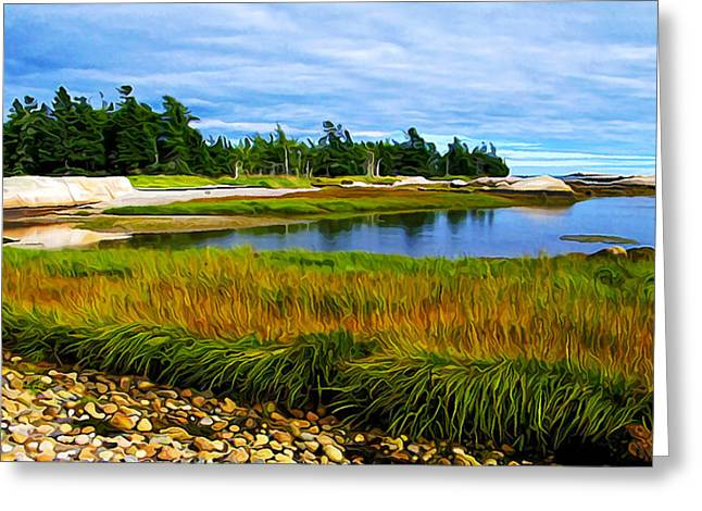 Ocean Photography Greeting Cards - Great Wass Sea Grass Panorama Greeting Card by Bill Caldwell -        ABeautifulSky Photography