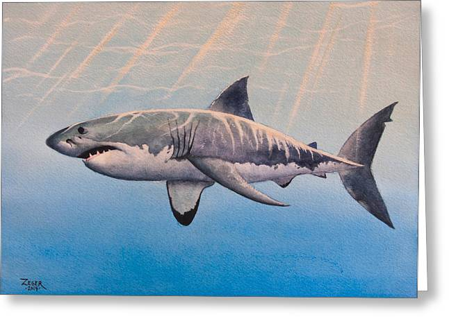 White Shark Paintings Greeting Cards - Great White Greeting Card by James Zeger