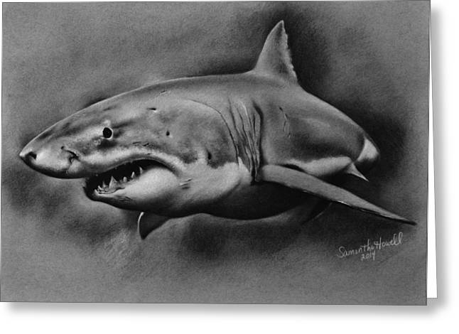 White Shark Mixed Media Greeting Cards - Great White Greeting Card by Samantha Howell