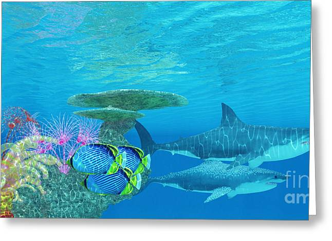 Sea Creature Pictures Greeting Cards - Great White Shark Reef Greeting Card by Corey Ford