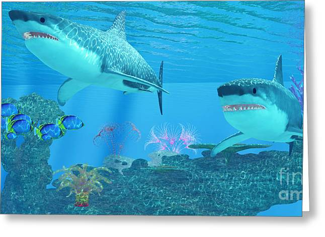 White Shark Greeting Cards - Great White Shark Shoal Greeting Card by Corey Ford