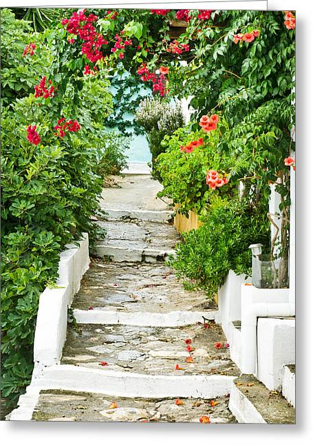 Passageways Greeting Cards - Greek steps Greeting Card by Tom Gowanlock