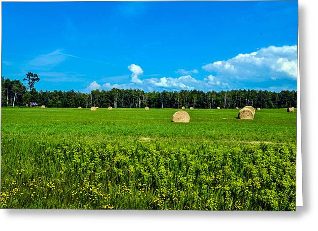 Hay Bales Greeting Cards - Green Acres Greeting Card by Darrell Kroulik