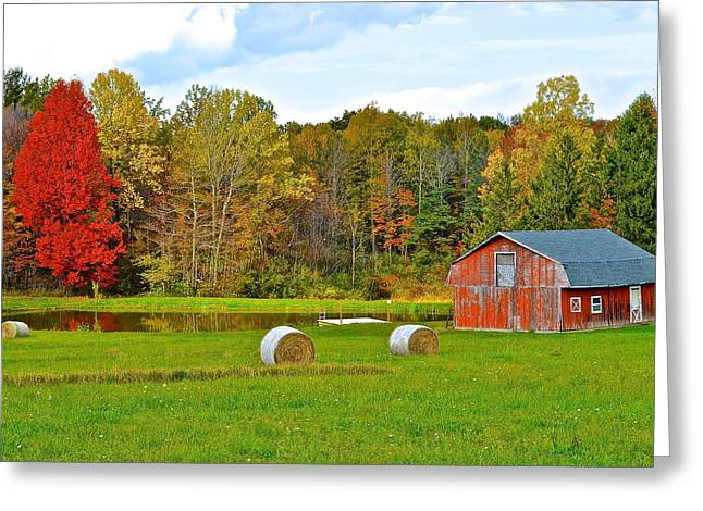 Amish Greeting Cards - Green Acres Greeting Card by Frozen in Time Fine Art Photography