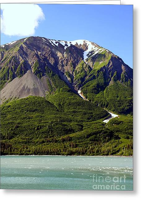 Alaska Photography Greeting Cards - Green Alaska Greeting Card by Sophie Vigneault