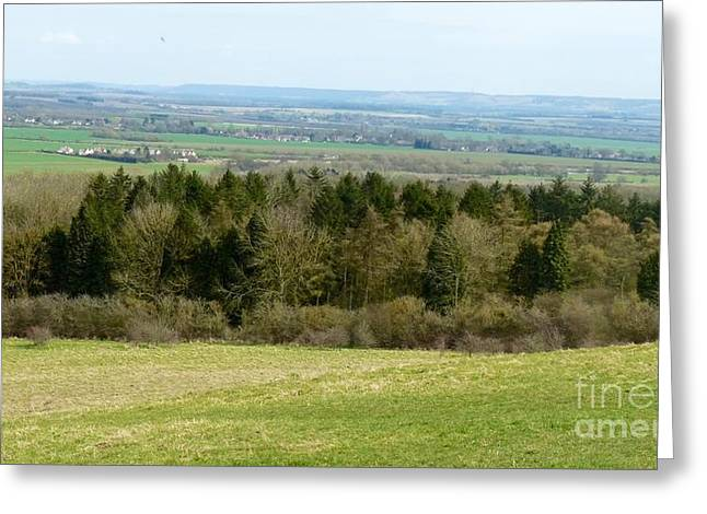 Julie Koretz Greeting Cards - Green and pleasant land Greeting Card by Julie Koretz