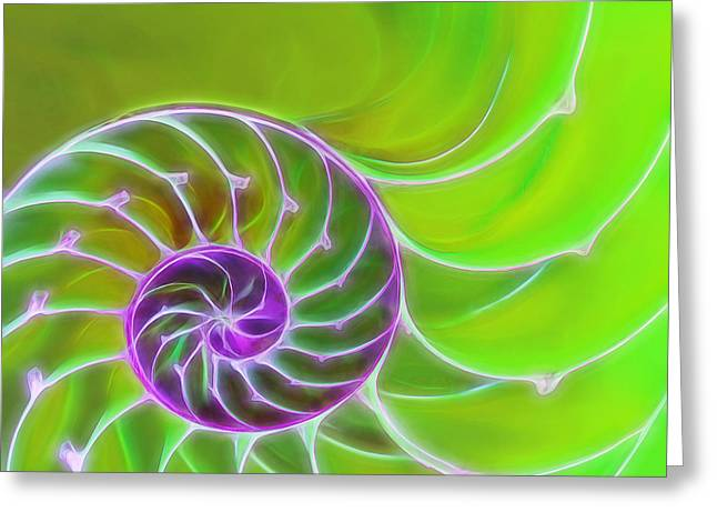 Geometric Artwork Greeting Cards - Green and Purple Spiral Greeting Card by Gill Billington