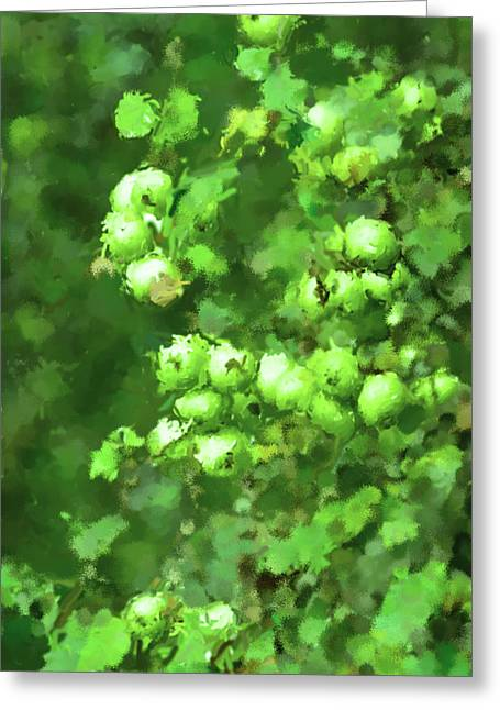 Fruit Tree Art Greeting Cards - Green apple on a branch Greeting Card by Toppart Sweden