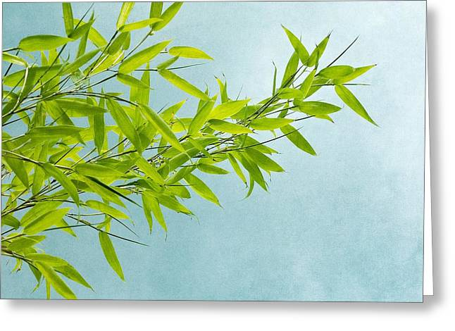 Bamboo Greeting Cards - Green Bamboo Greeting Card by Priska Wettstein