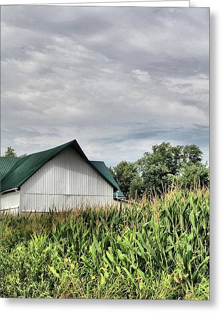 Peaceful Scene Greeting Cards - Green Barn Greeting Card by Dan Sproul