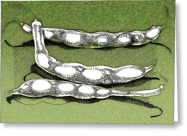 Green Beans Drawings Greeting Cards - Green Beans Greeting Card by Richard Glen Smith