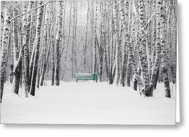 Winter Storm Greeting Cards - Green Bench Greeting Card by Alexander Senin