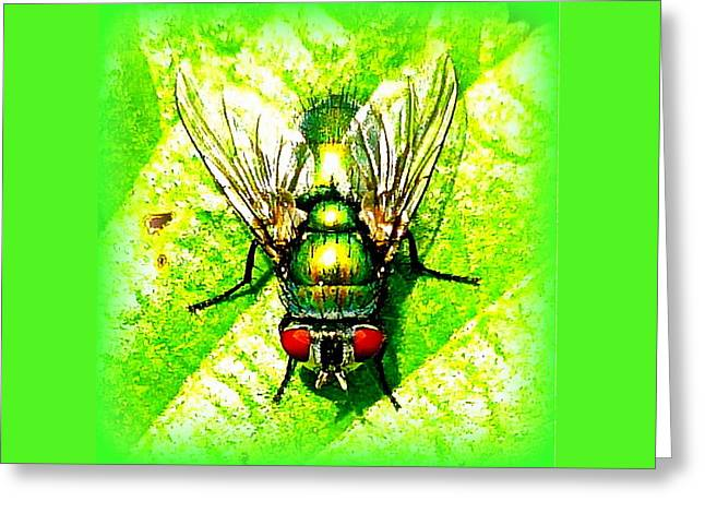 Green Bottle Fly Greeting Card by The Creative Minds Art and Photography