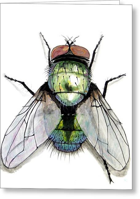 Green Ceramics Greeting Cards - Green Bottle Housefly Greeting Card by Nathan Ryan