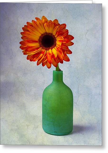 Color Green Greeting Cards - Green Bottle With Orange Daisy Greeting Card by Garry Gay