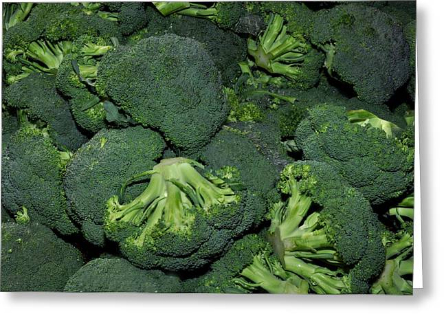 Broccoli Greeting Cards - Green Broccoli Greeting Card by Diane Lent