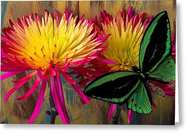 Antenna Greeting Cards - Green Butterfly On Fire Mums Greeting Card by Garry Gay