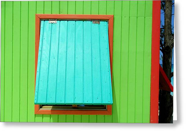 Cabin Window Greeting Cards - Green Cabin Greeting Card by Randall Weidner