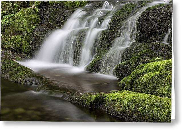 Buttermilk Falls Greeting Cards - Green Cascade Greeting Card by Sara Hudock