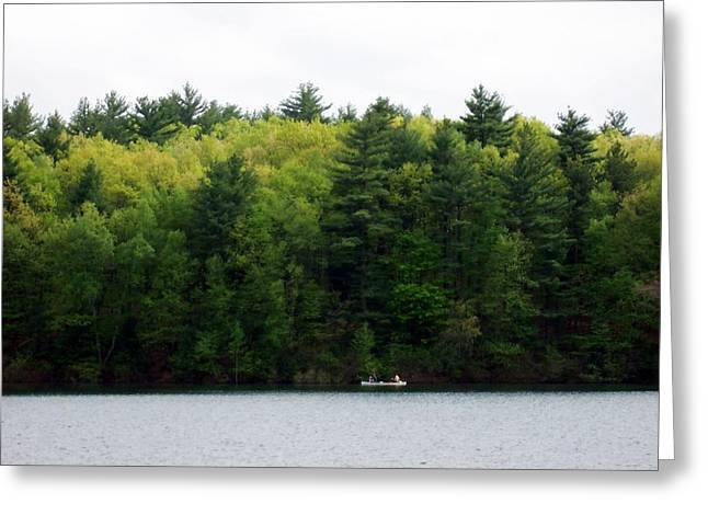 Walden Pond Greeting Cards - Green Greeting Card by Catherine Gagne