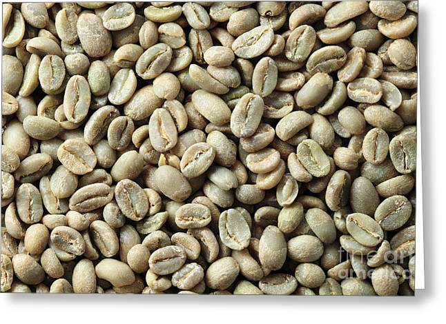 Green Beans Greeting Cards - Green Coffee Bean Background Greeting Card by Tom Grundy