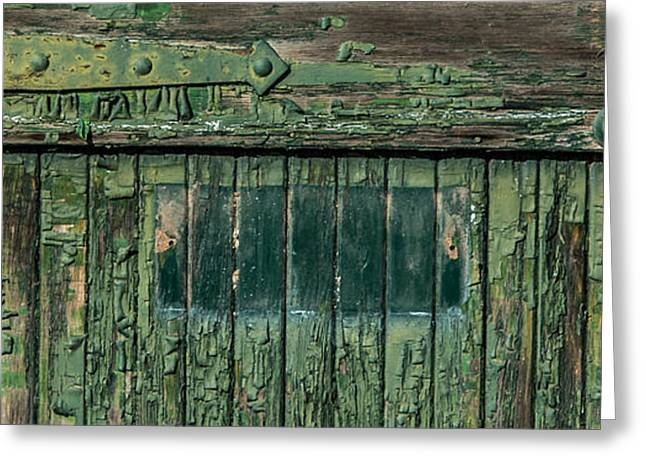 Entrance Door Greeting Cards - Green Door Greeting Card by Paul Freidlund