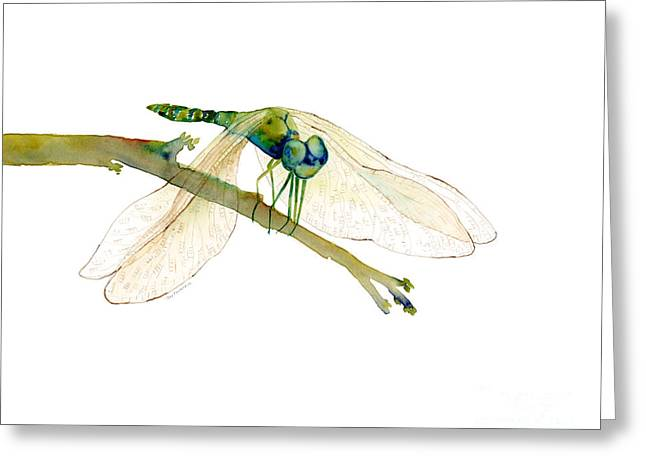 Dragonflies Greeting Cards - Green Dragonfly Greeting Card by Amy Kirkpatrick