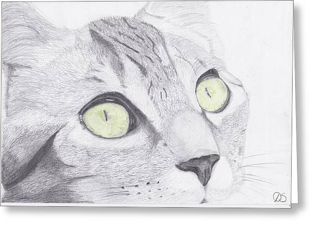 Feline Greeting Cards - Green Eyed Cat Greeting Card by David Smith