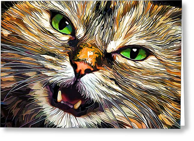 Tortie Greeting Cards - Green-Eyed Girl Greeting Card by Bill Caldwell -        ABeautifulSky Photography
