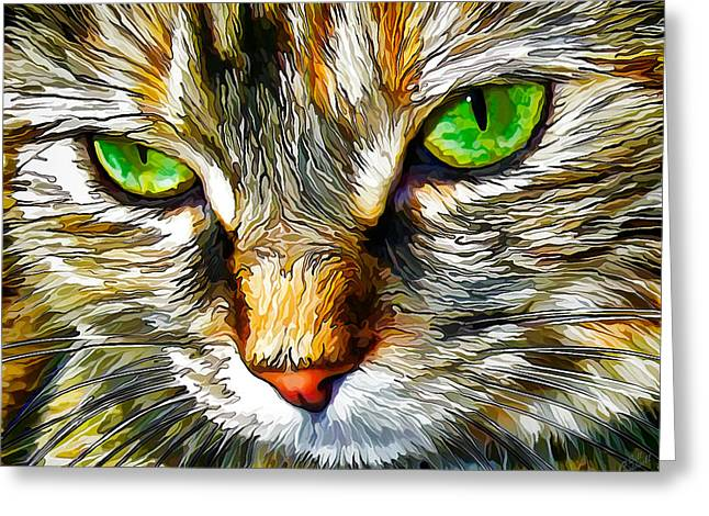 Tortie Greeting Cards - Green-Eyed Monster Greeting Card by Bill Caldwell -        ABeautifulSky Photography