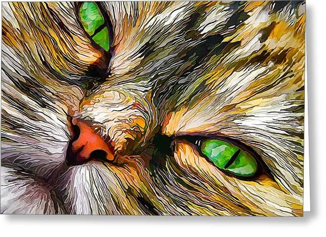 Abeautifulsky Greeting Cards - Green-Eyed Tortie Greeting Card by Bill Caldwell -        ABeautifulSky Photography