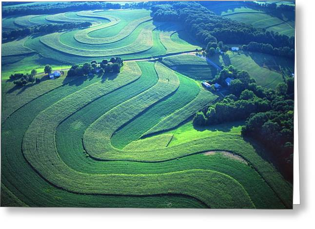 Contour Plowing Greeting Cards - Green farm contours aerial Greeting Card by Blair Seitz